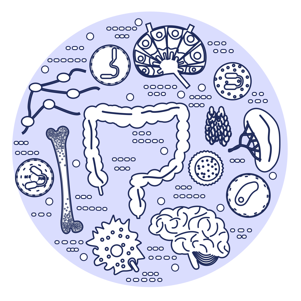 A circle holds icons representing various components of the immune system.